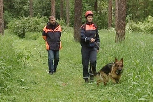ВБашкирии пропала 2-летняя девочка