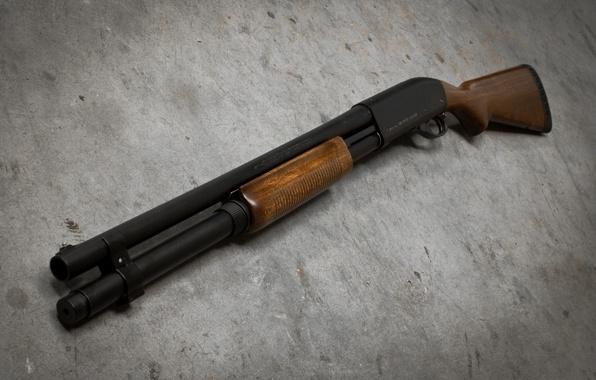 В столице России пенсионер изружья застрелил соседа покоммуналке