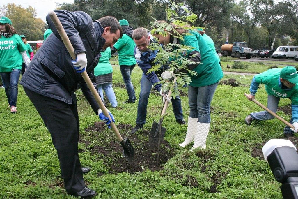 Москвичи выберут дворы для высадки новых деревьев