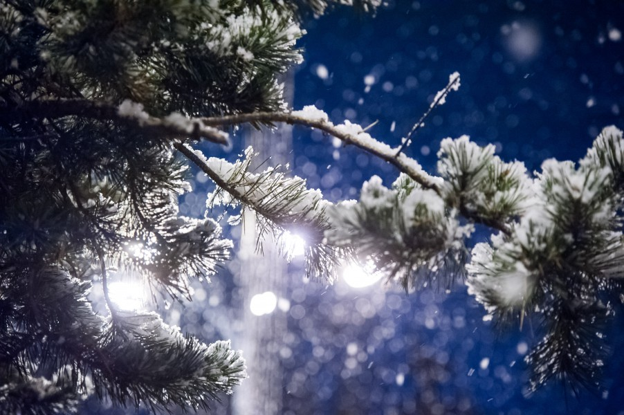 Самая холодная ночь начала зимы зафиксирована в столицеРФ