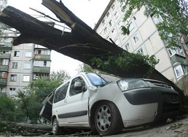 Водителей призвали внимательно выбирать места для парковки в столице России из-за сильного ветра