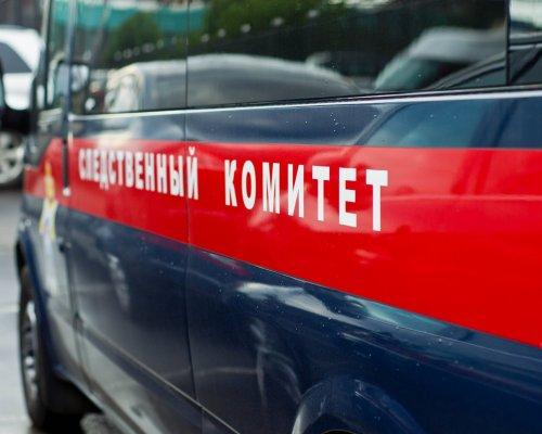 3-х летний сын разбился насмерть при падении изокна в столице России