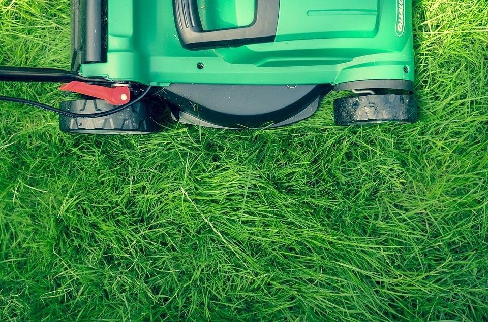 Граждане Южного Бутова выступают зарегулярную стрижку газонов водворах