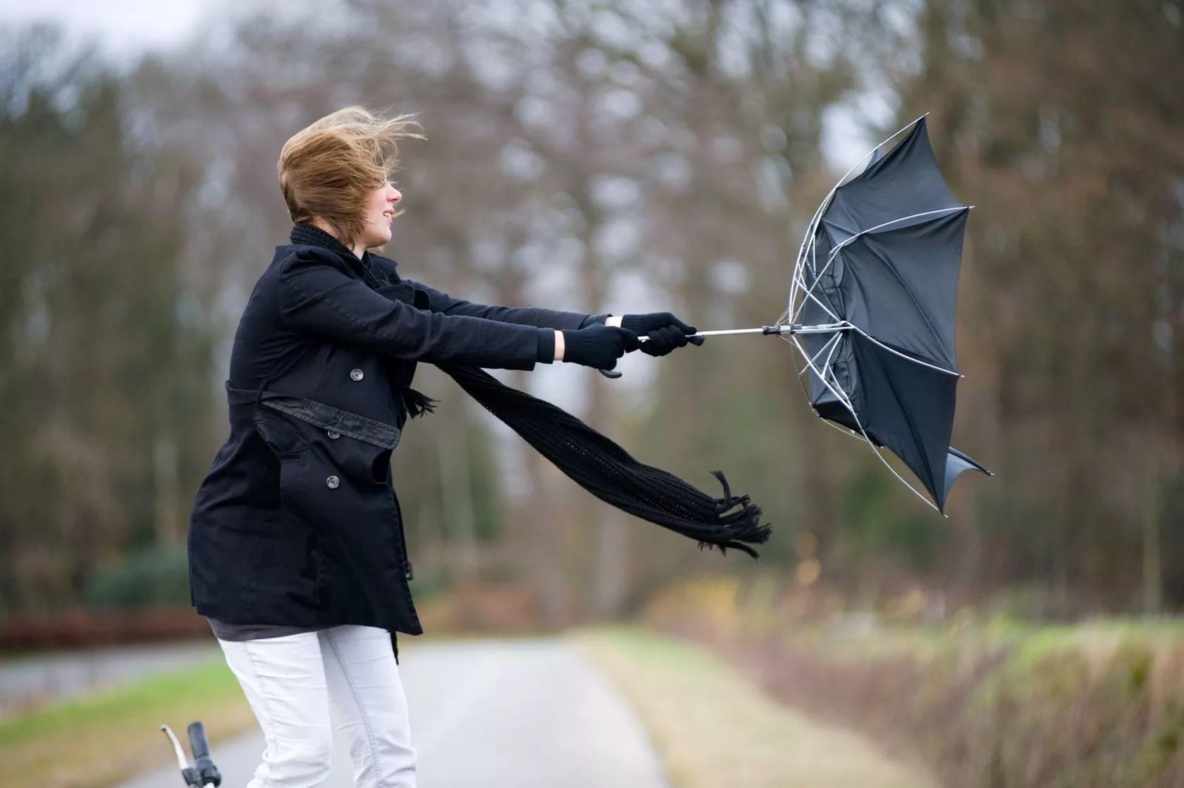 На 2 ноября в Москве объявили желтый уровень погодной опасности из-за ветра