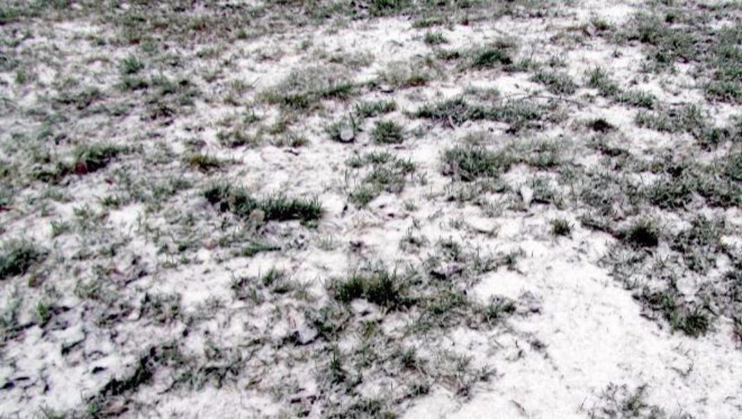 1-ый снег выпал в столице