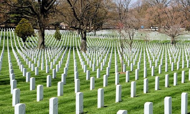 Рядом смусорным полигоном «Малинки» появится крупнейшее вевропейских странах кладбище