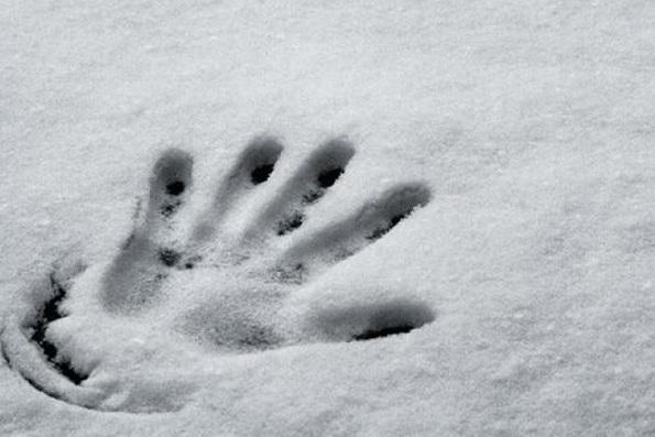 ВПодмосковье ребенок насмерть замерз влесу