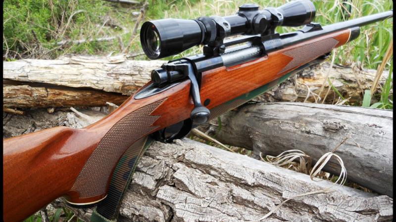 ВТверской области гражданин столицы застрелил пенсионера изохотничьего ружья