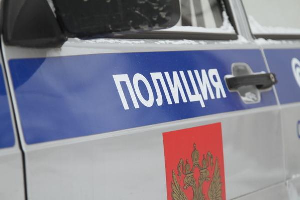 В столице России задержали подозреваемого вубийстве десятилетнего брата