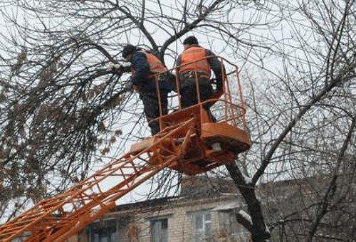 Пьяная москвичка, выпав изокна, повисла наветках дерева
