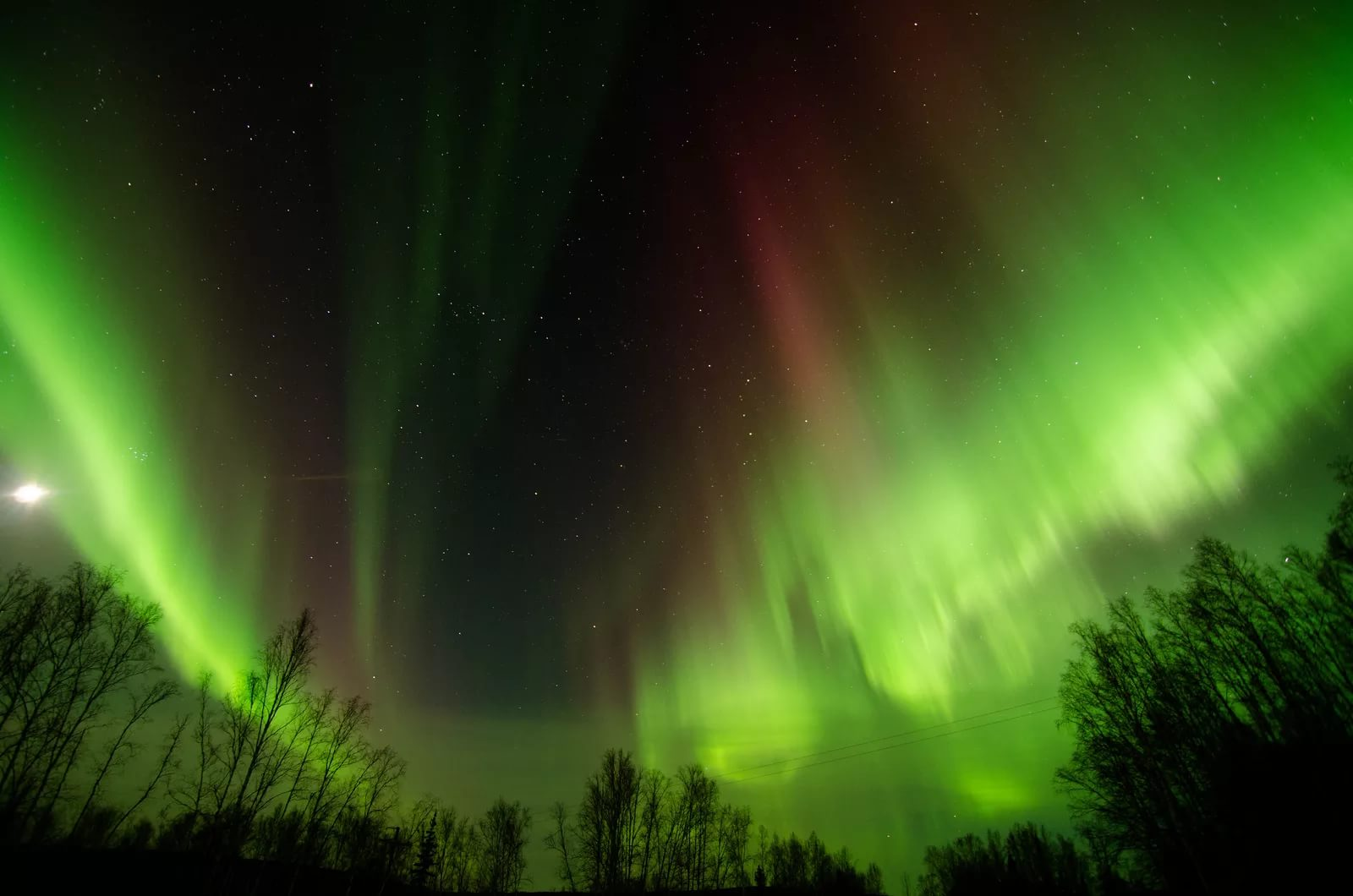 Северное сияние покажут гостям парка «Зарядье» в столице России