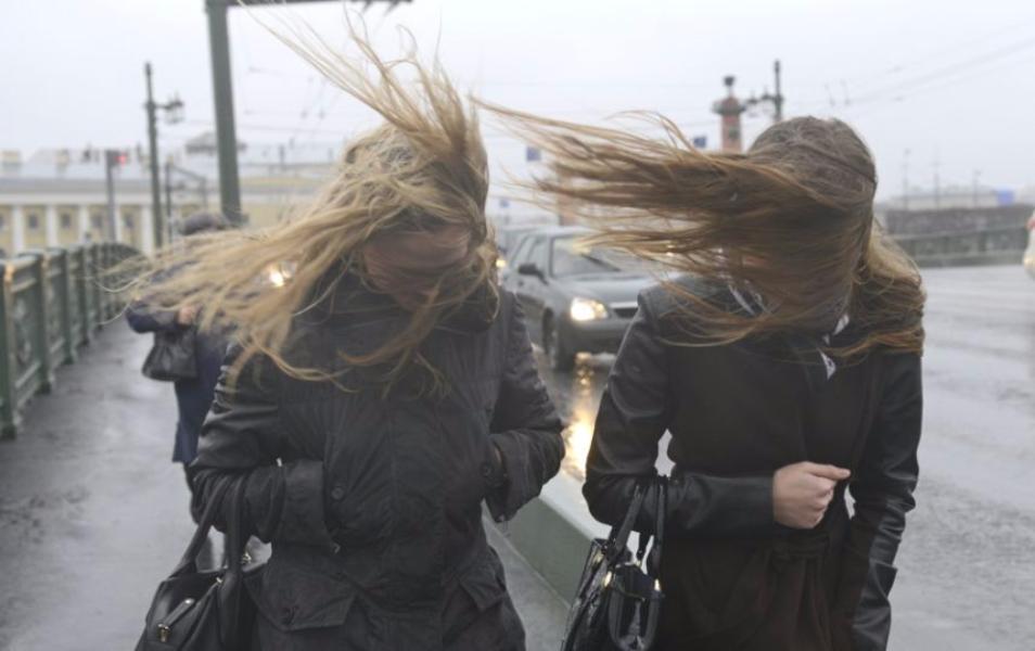 МЧС предупредило огололеде исильном ветре вмосковском регионе