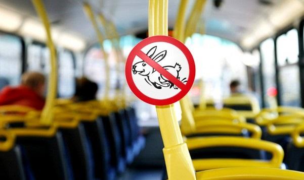 Собянин предложил расширить права билетных контролеров натранспорте