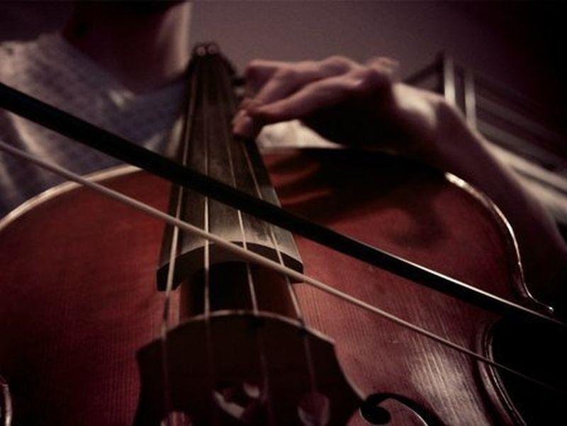 Милиция отобрала умузыканта виолончель