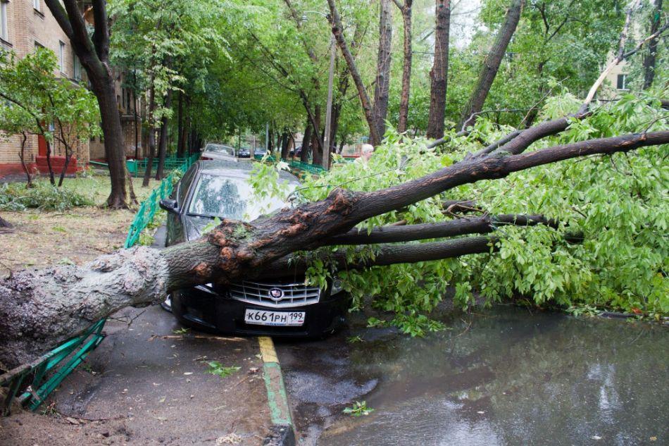 Новости про ураган в москве