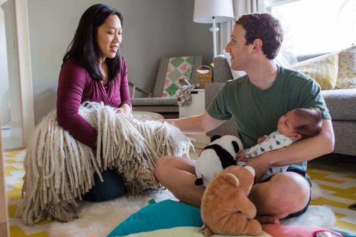 Марк Цукерберг во второй раз станет отцом