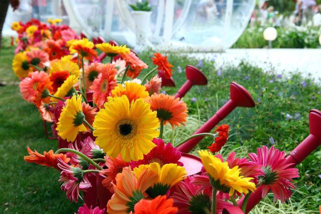 В столице России пройдет Международный фестиваль садов ицветов— Собянин