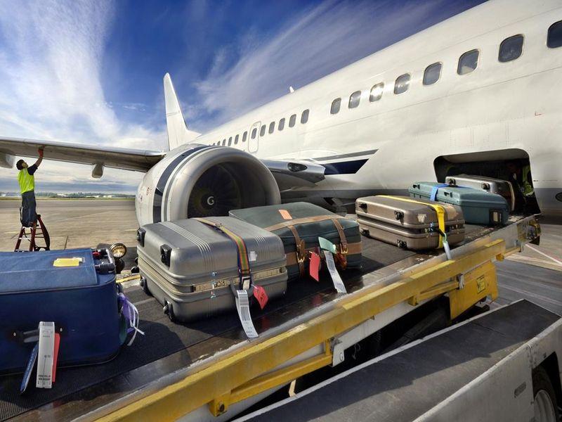 В Москву доставили 60 тонн багажа из Египта