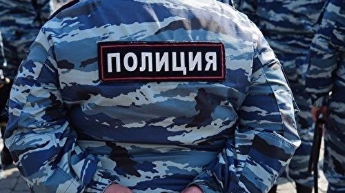 СПЧ подготовит Путину доклад омитинге «Оннам неДимон» в российской столице