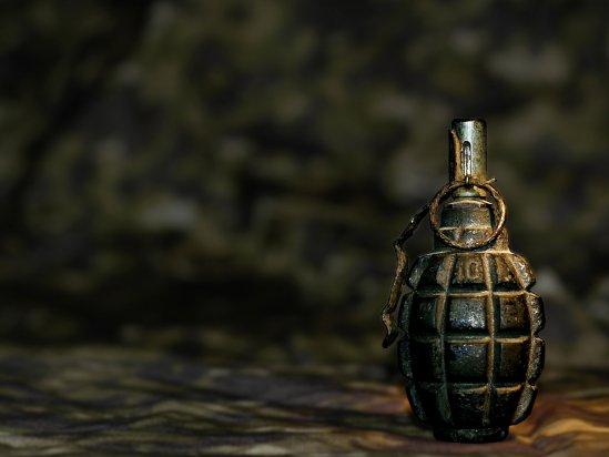 Вмерзшую влед противопехотную гранату обнаружили наНовоясеневском пруду