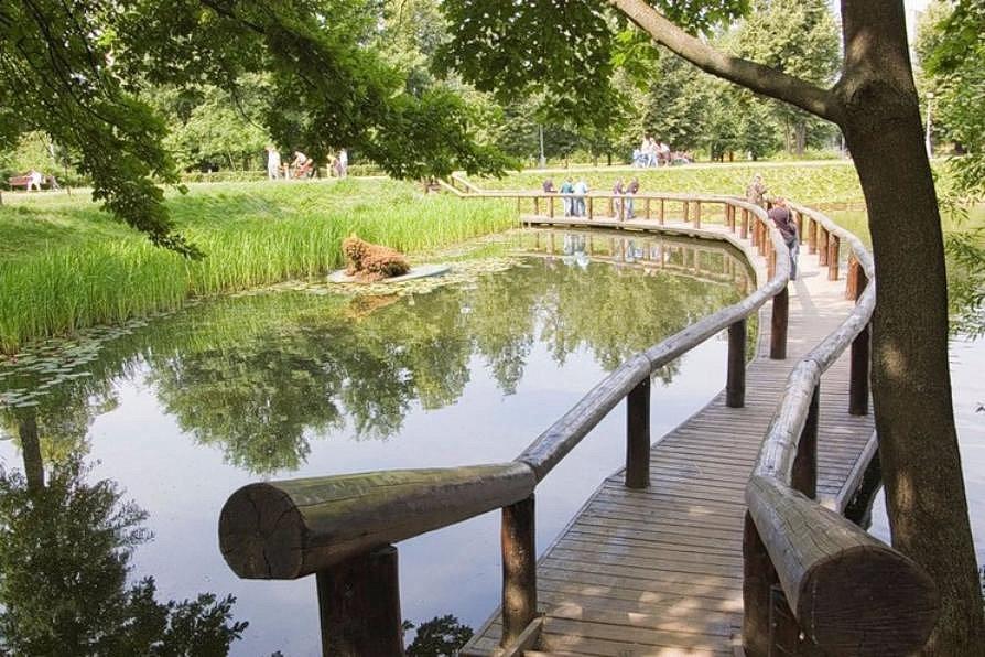 правильно залить воронцовский парк в москве онлайн бесплатно день